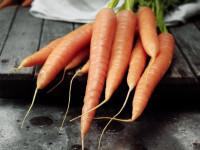 Морковь — виды, основные достоинства и противопоказания + 104 фото