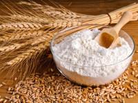 Пшеница — разновидности, места для выращивания и полезные свойства + 78 фото