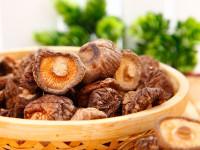 Шиитаке — внешний вид, состав, польза и вред, культивирование гриба + 72 фото