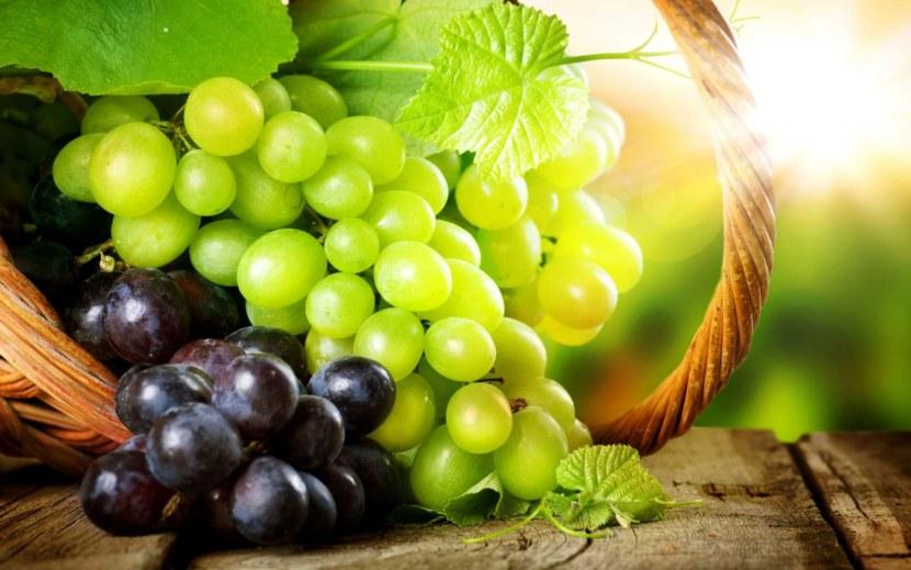 Виноград посадка и уход Сорта винограда